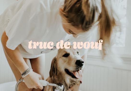 Notre chien peut avoir la même routine que nous Au poil